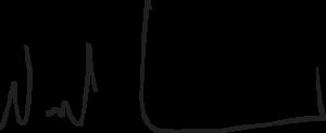 Michael Garrity's signature